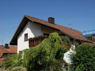 Vacation Apartment in Endingen am Kaiserstuhl - 807 sqft, large, friendly, modern, spacious south-facing… - Endingen vacation rentals