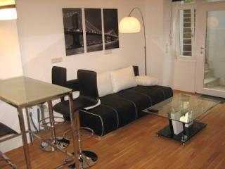 Vacation Apartment in Munich - stylish, lovely, central (# 1395) - Eichenau b Muenchen vacation rentals