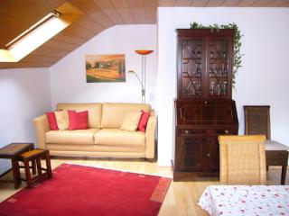 Vacation Apartment in Tübingen - 538 sqft, quiet, spacious, comfortable (# 1856) - Tübingen vacation rentals