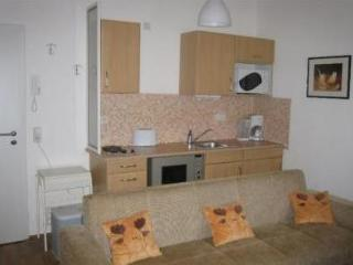 Vacation Apartment in Ulm - 334 sqft, compact, clean (# 2005) - Baden Wurttemberg vacation rentals