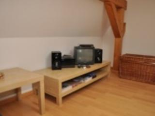 Vacation Apartment in Saalfeld - modern, newly refurnished (# 1660) - Thuringia vacation rentals