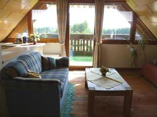 LLAG Luxury Vacation Apartment in Oberscheidweiler - 678 sqft, completely furnished, beautiful location… - Oberscheidweiler vacation rentals
