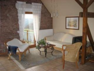 LLAG Luxury Vacation Apartment in Rothenberg - 699 sqft, large backyard, play area (# 900) - Rothenberg vacation rentals
