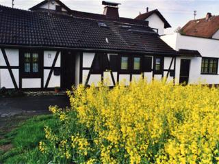 Vacation Apartment in Büdingen - table cloths, bedsheets, towels provided! (# 592) - Budingen vacation rentals
