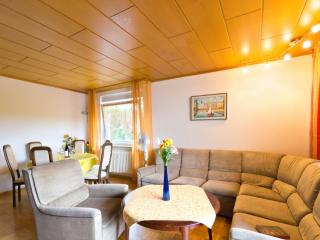 Vacation Apartment in Freiburg im Breisgau - 1023 sqft, Internet access for a fee, spacious, children… - Black Forest vacation rentals