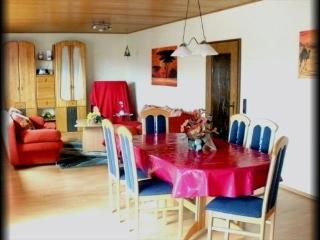 Vacation Apartment in Hohenahr - 1162 sqft, nice, clean, spacious (# 488) - Giessen vacation rentals