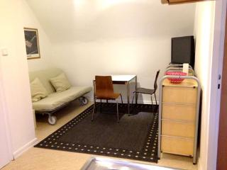 Vacation Apartment in Höchst (Frankfurt am Main) - 484 sqft, nice, central, quiet (# 522) - Hesse vacation rentals