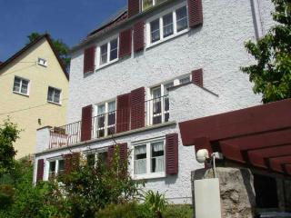 LLAG Luxury Vacation Apartment in Jena - 753 sqft, large terrace (# 1424) - Thuringia vacation rentals