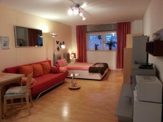 Vacation Apartment in Munich - 323 sqft, nice, clean, modern (# 854) - Eichenau b Muenchen vacation rentals