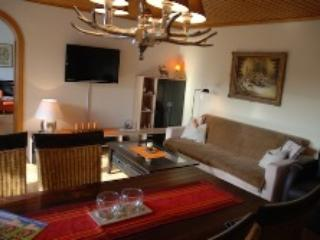 Vacation Apartment in Bad Harzburg - 592 sqft, bus stop next to the house, parking space available,… - Bad Harzburg vacation rentals