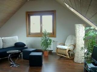 Vacation Apartment in Holzmaden - 581 sqft, spacious, comfortable, well furnished (# 2123) - Baden Wurttemberg vacation rentals