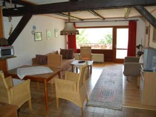 Vacation Apartment in Bodenfelde - nice lawn, right on the river, free WIFI (# 1912) - Wahlsburg vacation rentals