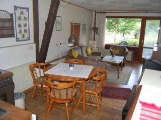 Vacation Apartment in Bodenfelde - nice lawn, right on the river, free WIFI (# 1915) - Wahlsburg vacation rentals