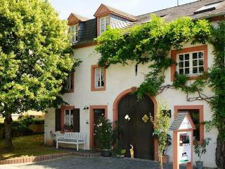 Vacation Apartment in Konz - charming, quiet, relaxing (# 1568) - Konz vacation rentals