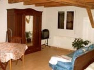 Vacation Apartment in Endingen am Kaiserstuhl - nice, central, relaxing (# 857) - Endingen vacation rentals