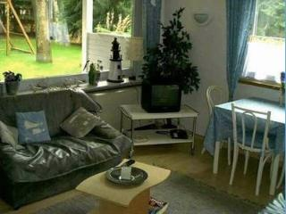 Vacation Home in Isenbüttel - 645 sqft, nice, clean, relaxing (# 933) - Isenbuettel vacation rentals