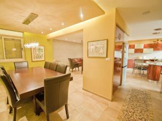 Gorgeous 5 bed  Villa Jerusalem Vacation Apartment - Jerusalem vacation rentals