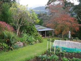 farm  cottage in private garden setting - Coromandel vacation rentals