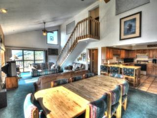 Buntrock Chalet - Steamboat Springs vacation rentals