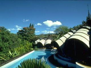 The Onion House- Vacation in a work of art! - Kailua-Kona vacation rentals