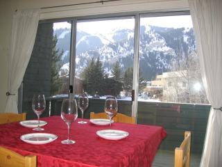 Perfect for 1 or 2 in Downtown Ketchum - Ketchum vacation rentals