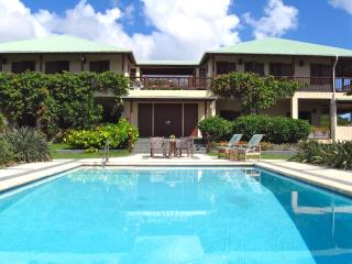 Spectacular 4 bedroom villa: pool, views, charm - Saint Kitts and Nevis vacation rentals