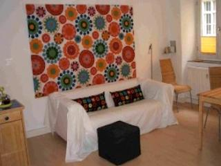 Single Room in Landshut - 376 sqft, nice, quiet, central (# 551) - Bavaria vacation rentals
