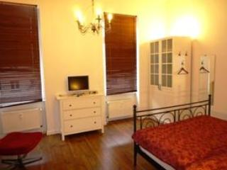 Single Room in Wiesbaden - 452 sqft, ideal for business travelers (# 584) - Hesse vacation rentals