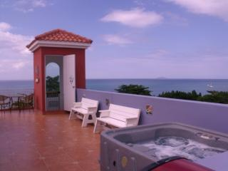 Sky View Penthouse, Private terrace  BBQ & Jacuzzi - Rincon vacation rentals