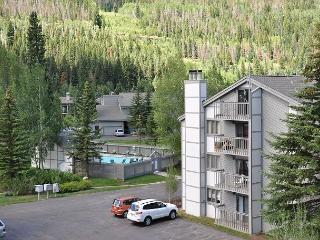 3 bedroom 3 bathroom 1068 sq feet condo on ground level East Vail free bus - Vail vacation rentals