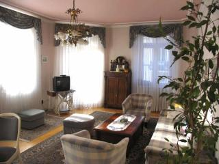 LLAG Luxury Vacation Apartment in Baden Baden - spacious, nice, clean (# 252) - Baden-Baden vacation rentals