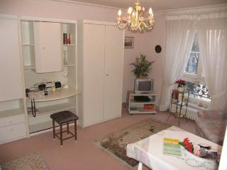 Vacation Apartment in Baden Baden - nice, clean (# 253) - Baden-Baden vacation rentals