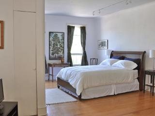 Loft Apartment on Kingston's Historic Waterfront - Hudson Valley vacation rentals