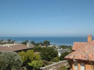 Stunning Ocean Views! Beautiful Beach Cottage Furnishings, Pet Ok! - Pacific Grove vacation rentals