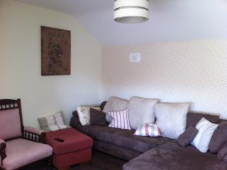 Spacious 1 Bedroom Apartment to sleep 4-5 - Naas vacation rentals