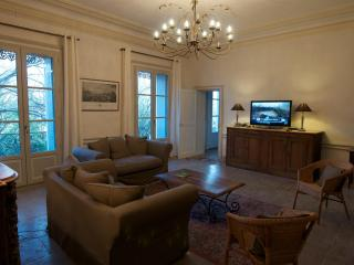 Large apartment in heart of Montpellier - Languedoc-Roussillon vacation rentals