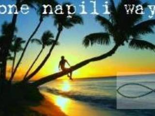 One of our One Napili Way logos. - Diamond Quality~Concrete Price 3 BDR@ Napili Beach - Lahaina - rentals