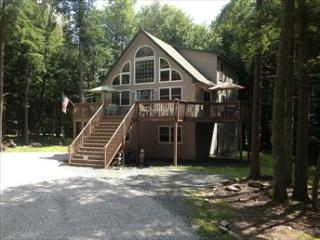CF017 94064 - Poconos vacation rentals