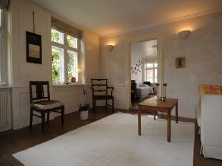 Beautiful Copenhagen apartment in the city centre - Copenhagen vacation rentals