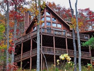 Spectacular Views! 3 BR Luxury Cabin-Aska Adv Area - Blue Ridge vacation rentals