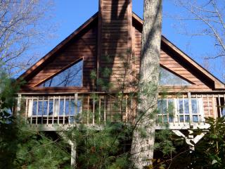 Happy Ours cabin buried in the woods - Butler vacation rentals