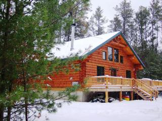 Unique Handmade Log Cabin, Lots of Amenities,Lake - Wisconsin vacation rentals