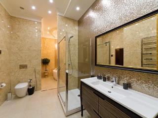 May be the best Jaccuzi and Sauna 1bedroom ap. - Kiev vacation rentals