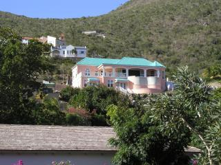 Luxury Villa Panoramic Caribbean View Turtle Beach - Turtle Beach vacation rentals