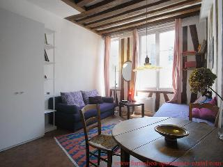Ideal Condo with 1 Bathroom in Paris (#05325 Studio rue de l'Hôtel Colbert 75005 Paris) - 4th Arrondissement Hôtel-de-Ville vacation rentals
