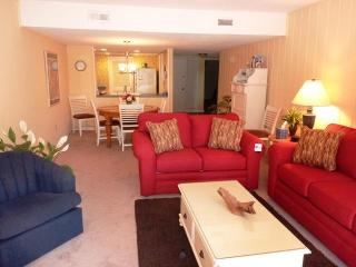 464,SEAPINES,WiFi,Bikes pool,tennis,Golf disc. - Sea Pines vacation rentals