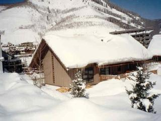 Great Location! Ski-in Mountain Home, Vail, CO - Vail vacation rentals