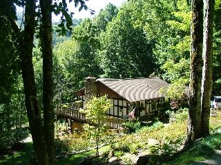 Gabriel's Nest - Wolf Laurel Resort - Mars Hill vacation rentals