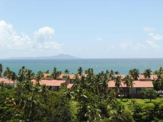 Luxury Ocean-view Penthouse in Palmas Del Mar PR - Humacao vacation rentals
