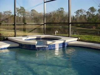 Florida Lakeview Villa - Davenport vacation rentals
